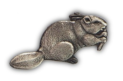 Beavers Badge
